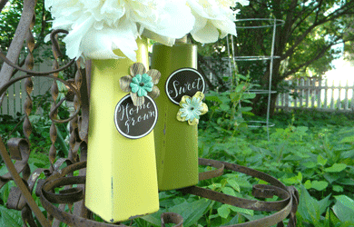 Shampoo Bottle Recycle – Home Decor