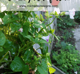 Creating a Colorful Fence - The Beginner's Guide - www.michellejdesigns.com