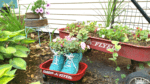 Runaway Bride DIY Tennis Shoe Flower Planter