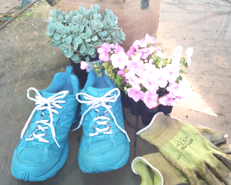 As part of our Movie Monday Challenge I created a DIY Tennis Shoe Flower Planter. Garden flower planters are a lot of fun to create from just about anything. www.michellejdesigns.com
