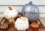 Thrift Store Pumpkins Makeover
