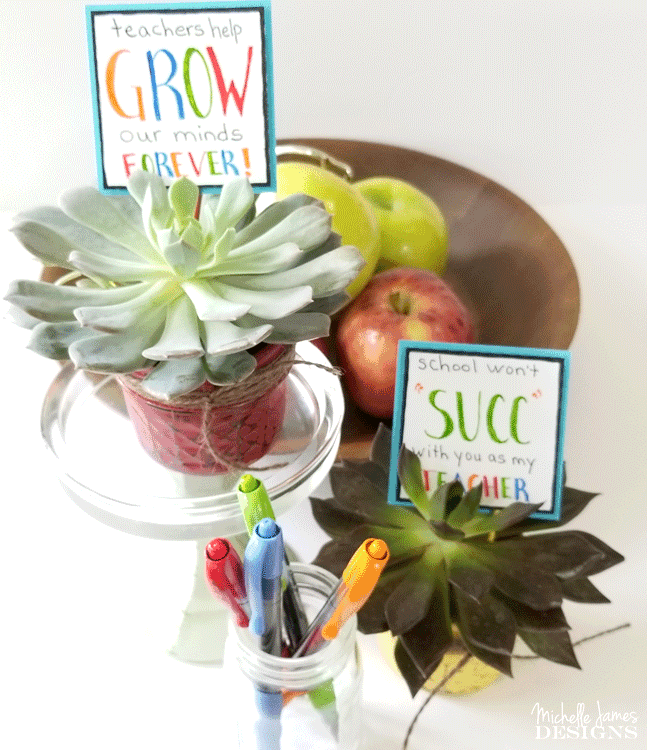 Create a diy mason jar teacher gift this year with succulents that will grow and be enjoyed all year long. - www.michellejdesigns.com