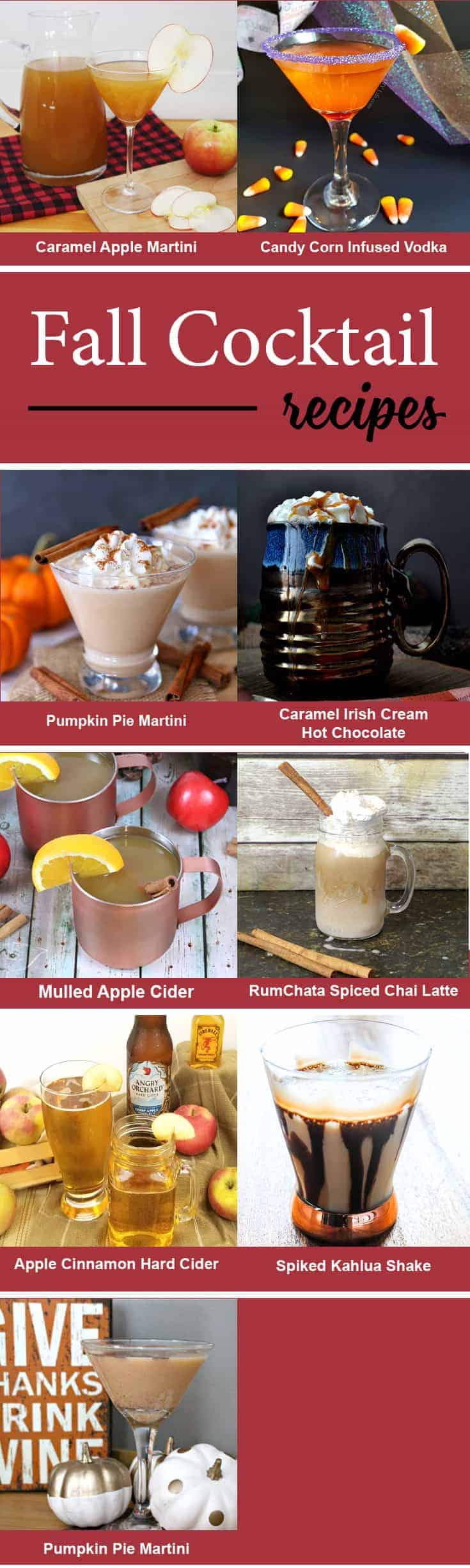 I love apple cider in the fall. The spices are great and they all blend together. This apple cinnamon hard cider recipes gives cider and alcohol twist! - www.michellejdesigns.com