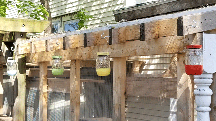 Finished mason jar lights hanging outside.