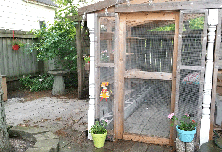 Catio area of the backyard patio with colorful pots and flower boxes.