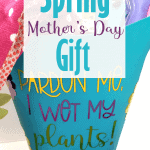 Finished Mother's Day garden gift basket