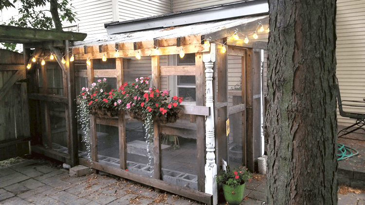Our catio space.  An outdoor area for our indoor cats
