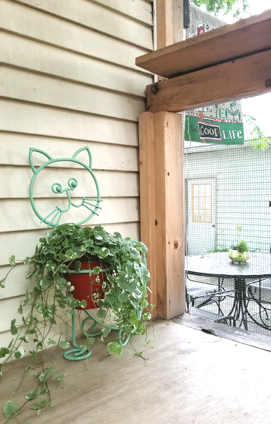 Finished cat planter for the catio.  Painted with Krylon Pistachio spray paint.