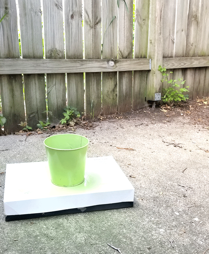 Separated pot from the plant stand so i could paint it a different color.  Bright, Lime green