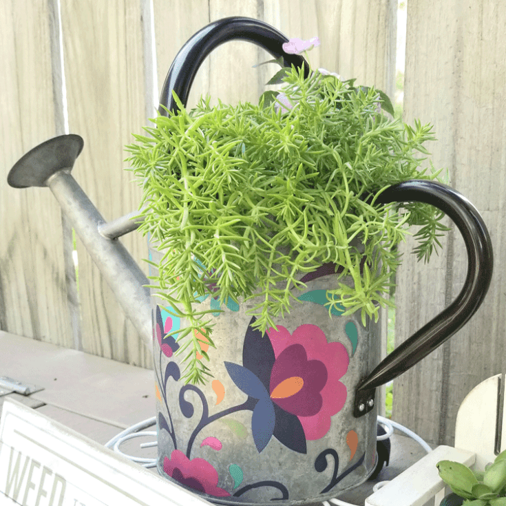 DIY Metal Garden Art made from a metal watering can and Dixie Belle Transfers