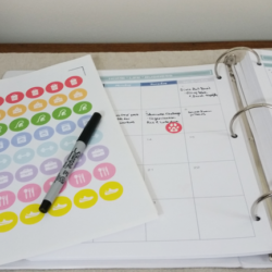 These free planner stickers can be printed then cut on the Silhouette Cameo. They are perfect for adding even more organization to your planner!